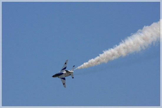 千歳基地航空祭 (2013年8月4日)_e0235910_23423596.jpg