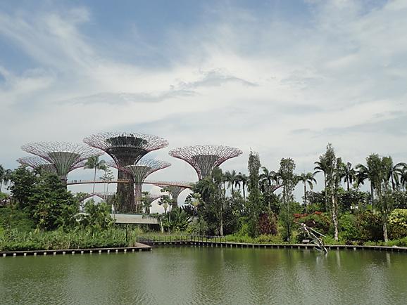 シンガポール15 ガーデンズ・バイ・ザ・ベイ_e0230011_1732894.jpg