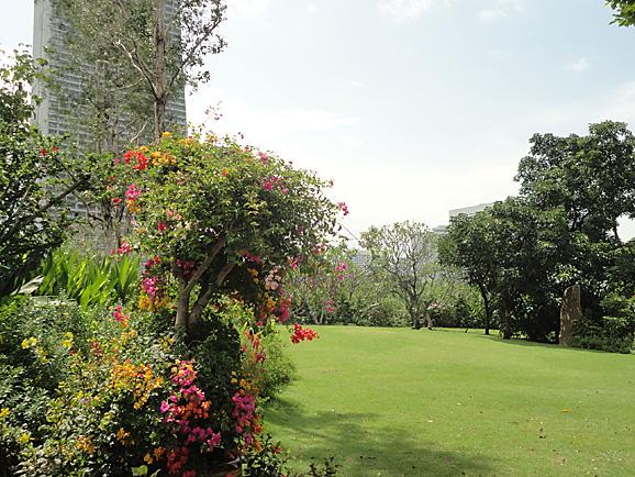 シンガポール15 ガーデンズ・バイ・ザ・ベイ_e0230011_1771284.jpg