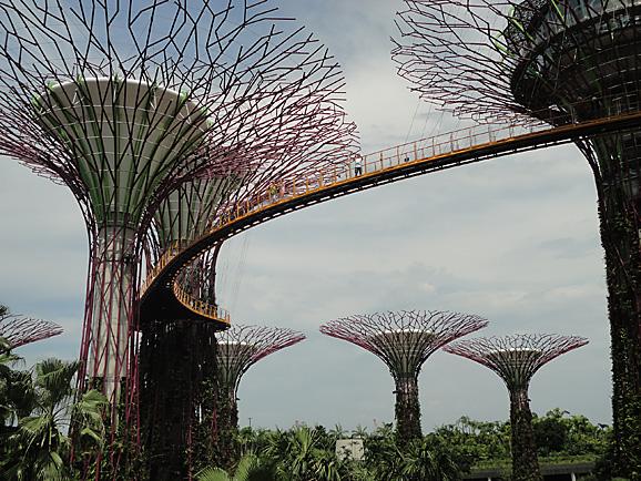 シンガポール15 ガーデンズ・バイ・ザ・ベイ_e0230011_1775576.jpg