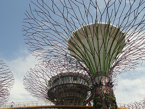 シンガポール15 ガーデンズ・バイ・ザ・ベイ_e0230011_1783727.jpg
