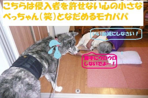 f0121712_16502550.jpg