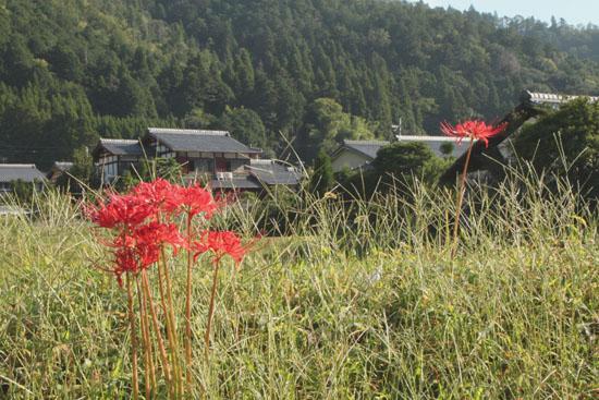 静原神社へ_e0048413_22232439.jpg