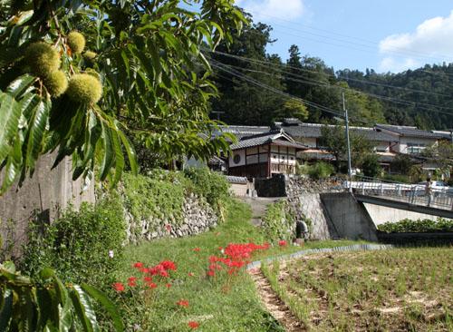 静原神社へ_e0048413_22244100.jpg