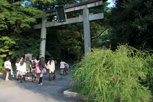 梨の木神社 萩まつり_e0048413_657366.jpg