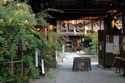 梨の木神社 萩まつり_e0048413_658147.jpg