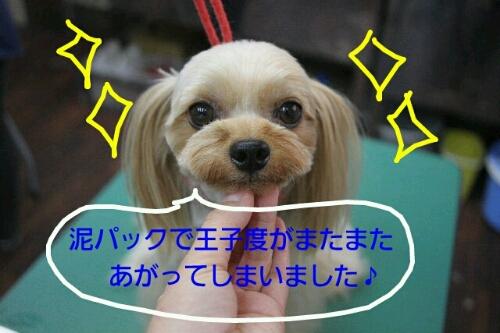 最終回_b0130018_1642738.jpg