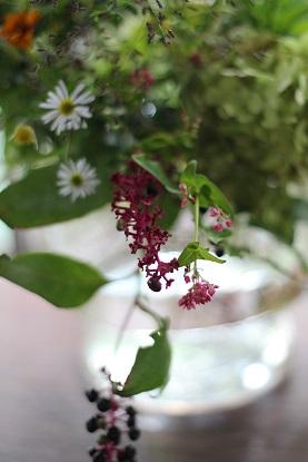 ikanika 9月の花の会・・・♪_f0168730_1959842.jpg