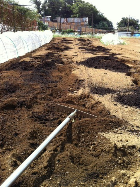 土を移動して水平に・・・トラクターでは限界があるんです_c0222448_14133854.jpg