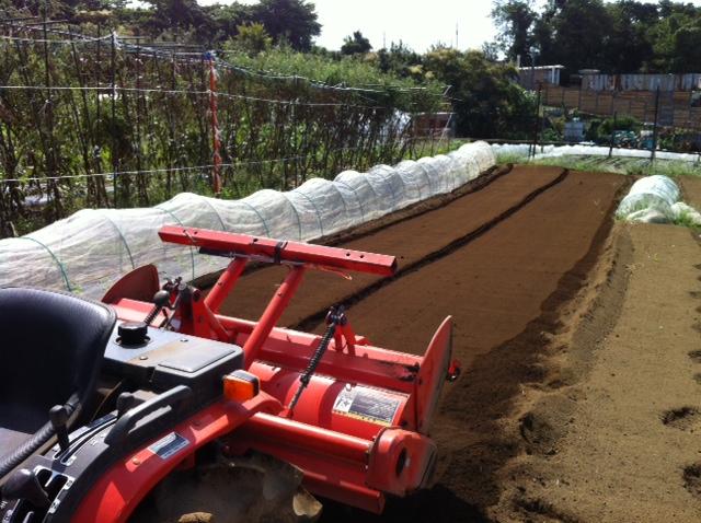 土を移動して水平に・・・トラクターでは限界があるんです_c0222448_1505120.jpg