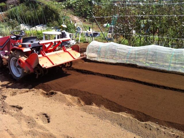 土を移動して水平に・・・トラクターでは限界があるんです_c0222448_1513982.jpg