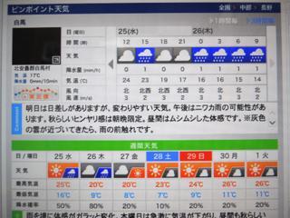 ギリギリまで未練たらしく現地の天気予報...._b0194185_23351390.jpg