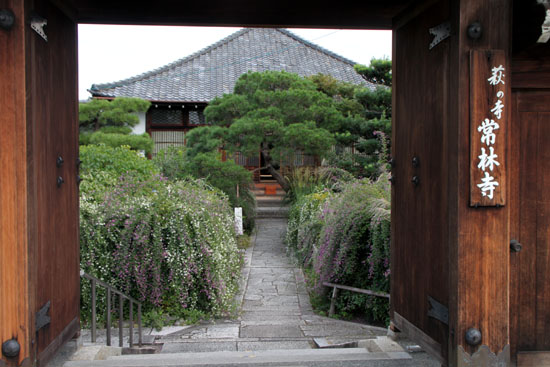 萩の寺 常林寺_e0048413_21225250.jpg