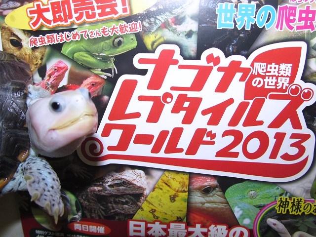 ☆ナゴヤレプタイルズワールド2013☆_b0174337_21291890.jpg