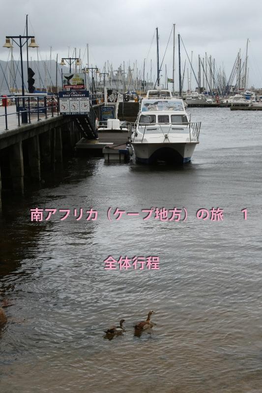 b0144049_1446851.jpg