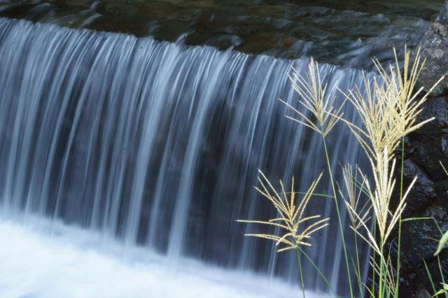 水の戯れ_a0257652_2224264.jpg