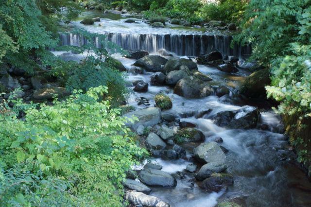 水の戯れ_a0257652_239304.jpg