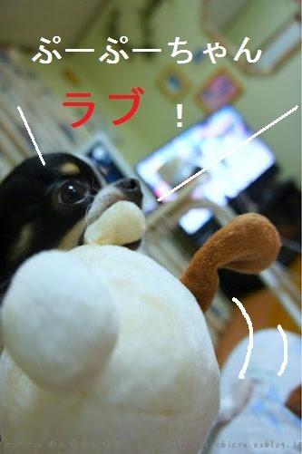 b0112758_2013267.jpg