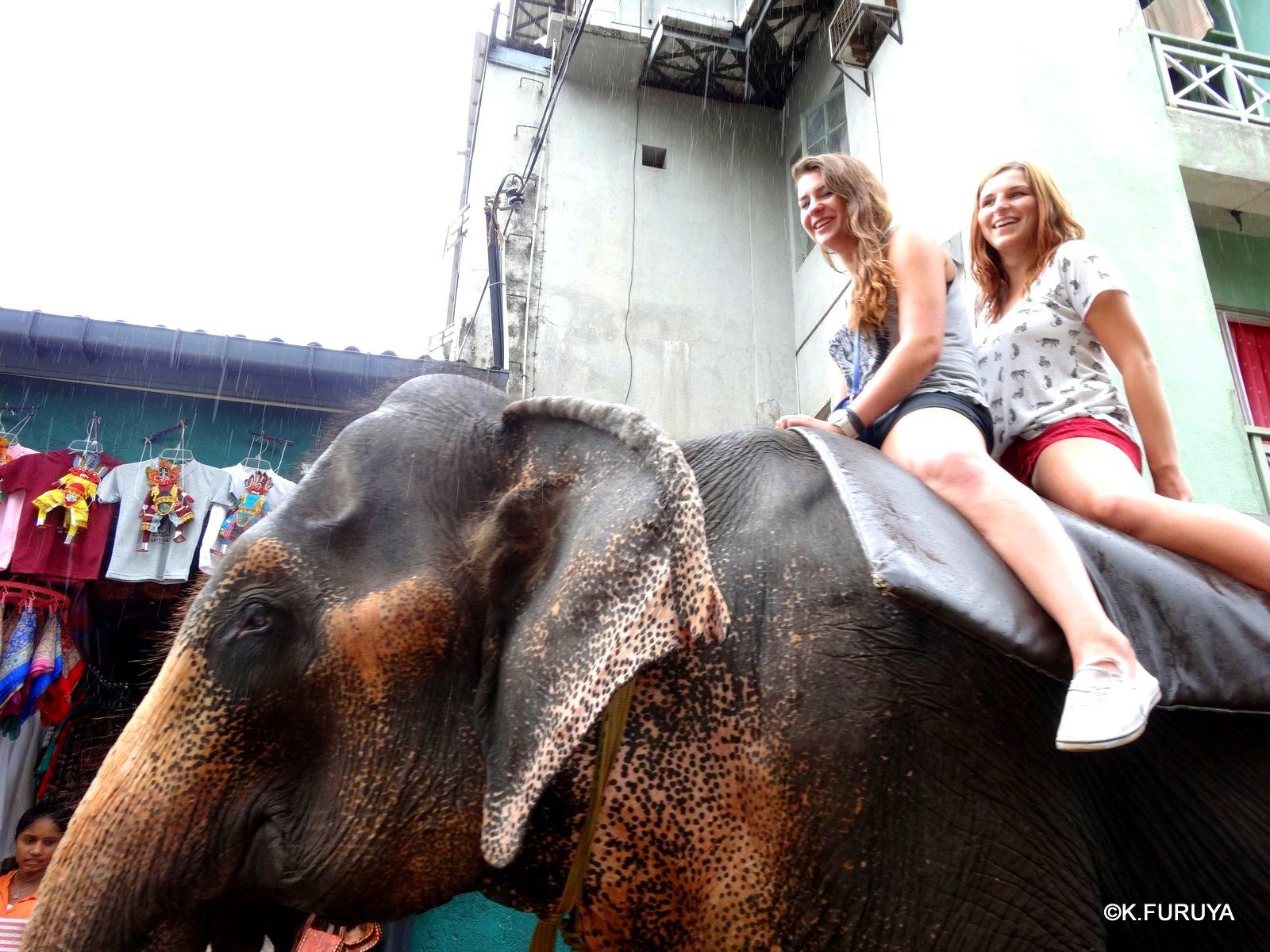 スリランカ旅行記 12 象の孤児院_a0092659_21251990.jpg