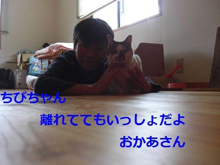 b0231886_20324553.jpg