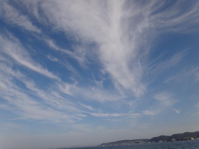 Sajima  /  Typhoon 20_b0195093_727279.jpg