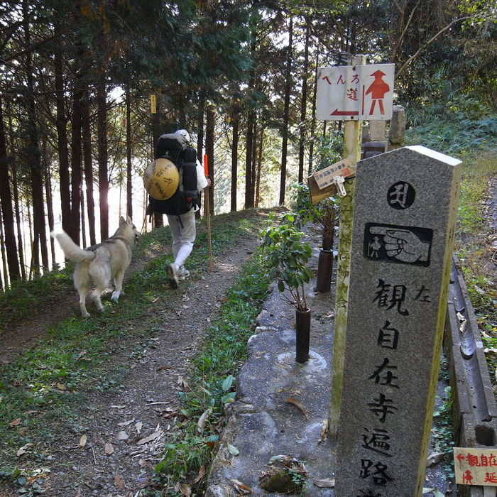 Memory of the second pilgrimage with husky HANA_c0049299_20295829.jpg