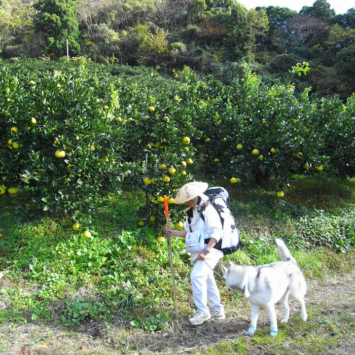 Memory of the second pilgrimage with husky HANA_c0049299_20303895.jpg