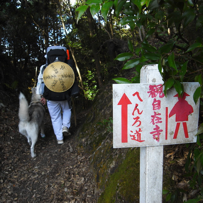 Memory of the second pilgrimage with husky HANA_c0049299_20395730.jpg