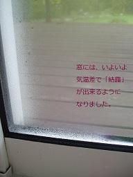 b0200310_22414632.jpg
