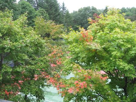 秋の気配_f0146620_22134143.jpg