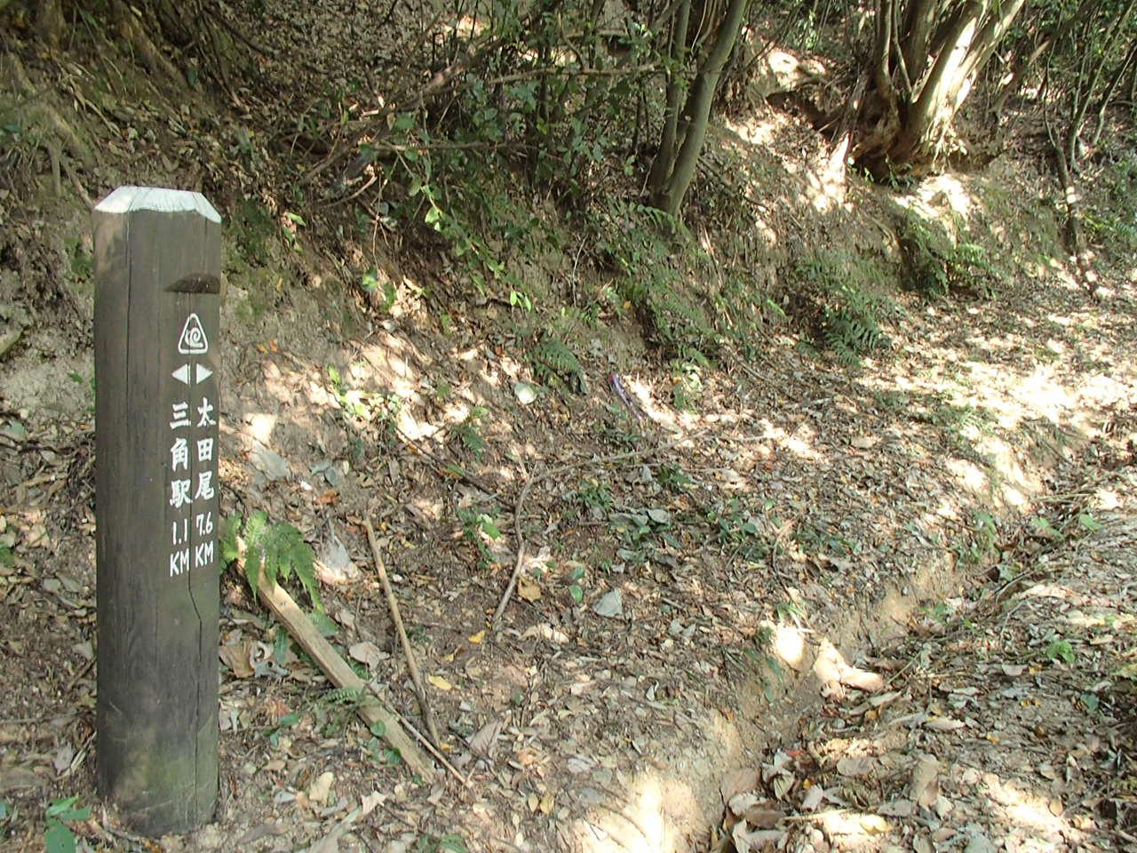 b0276758_16541948.jpg