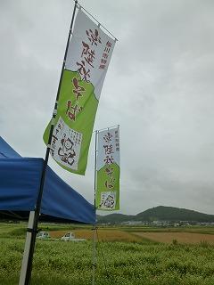 IBARAGIその3  蕎麦畑の真ん中で♪♪_a0165160_752510.jpg