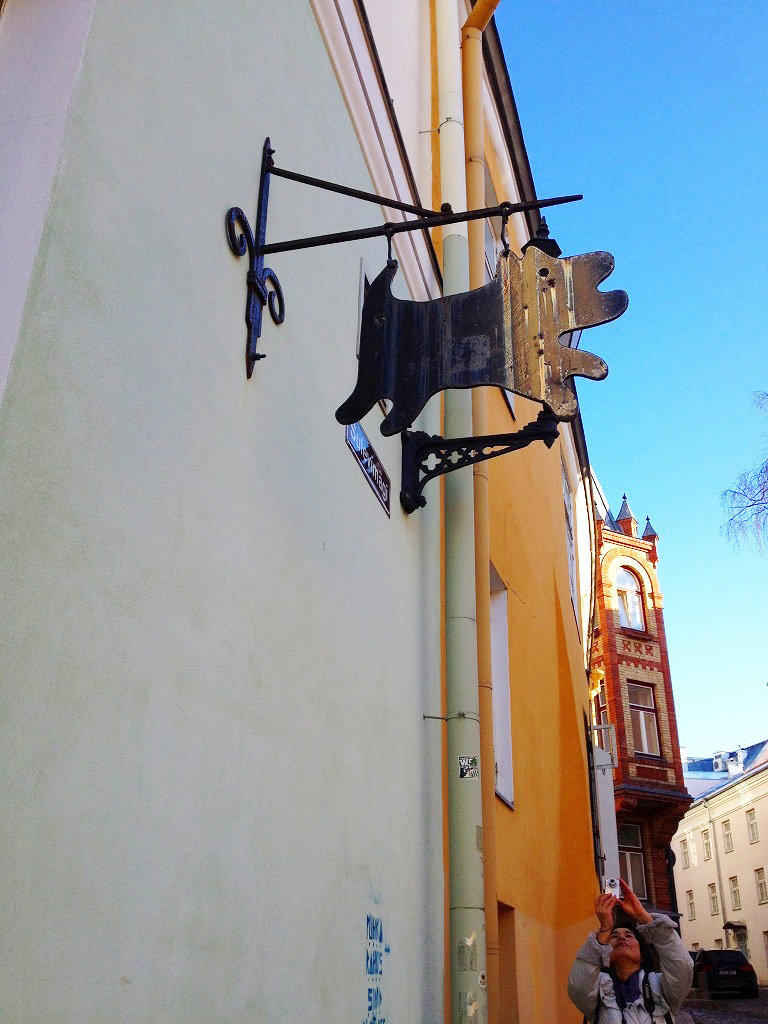春のエストニア・ハンガリー旅行のおさらい①_d0123163_10153476.jpg