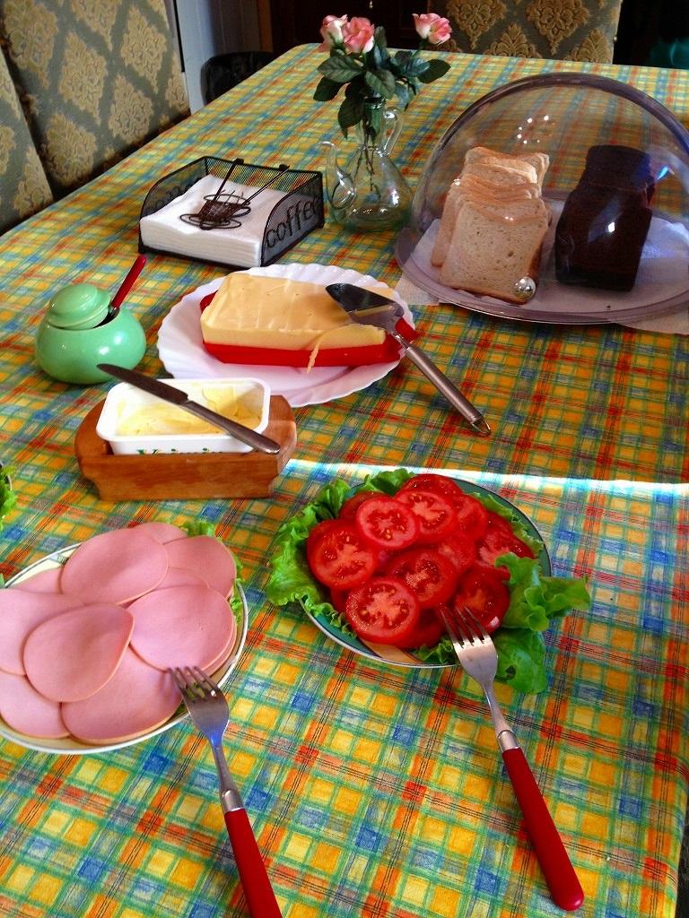 春のエストニア・ハンガリー旅行のおさらい①_d0123163_1020353.jpg
