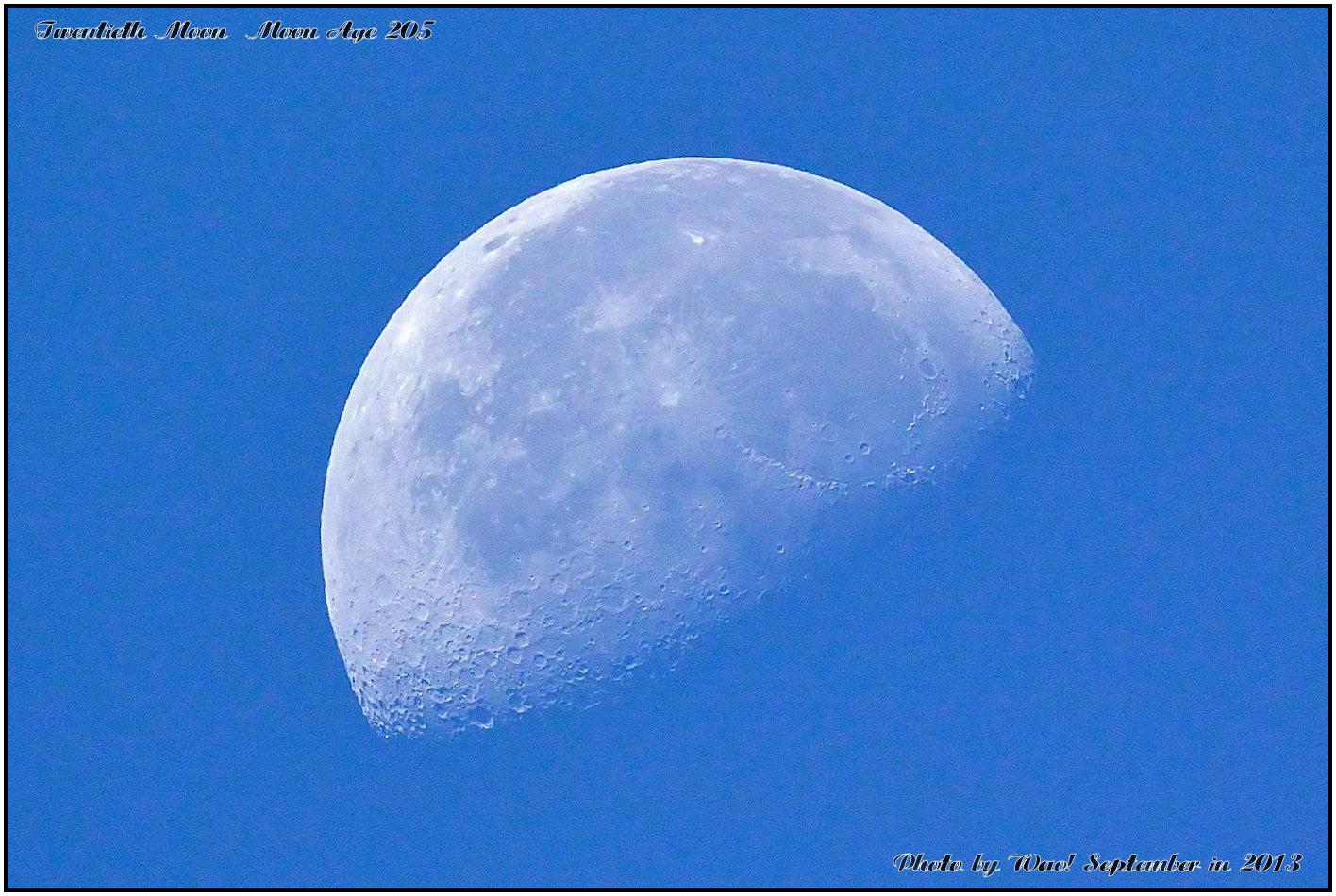 朝の月_c0198669_1643058.jpg