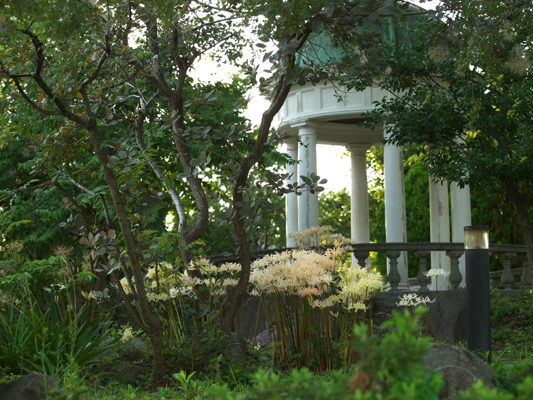 鶴見緑地  _f0021869_22542816.jpg