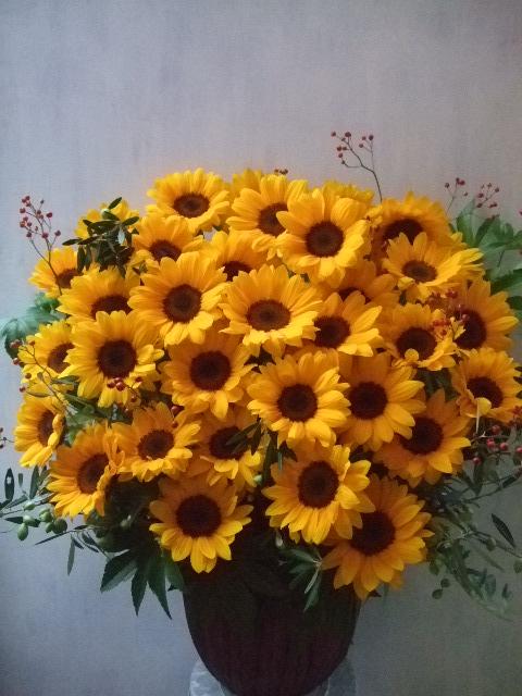 オークリーフ(インパクトのある花)_f0049672_1453129.jpg