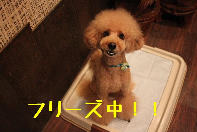 おはよぉ~ございます!!_b0130018_10241543.jpg
