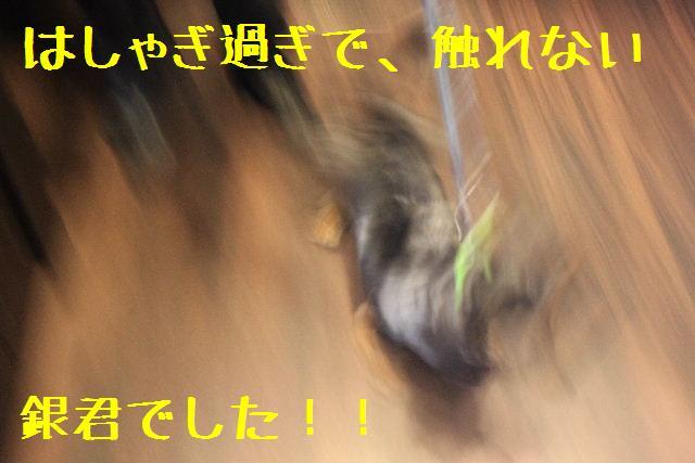 おはよぉ~ございます!!_b0130018_102617.jpg