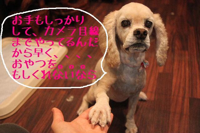 おはよぉ~ございます!!_b0130018_10283824.jpg