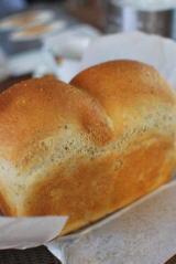 10月のパンイベントのお知らせ_a0175348_11125593.jpg