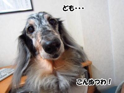 d0020869_14351377.jpg