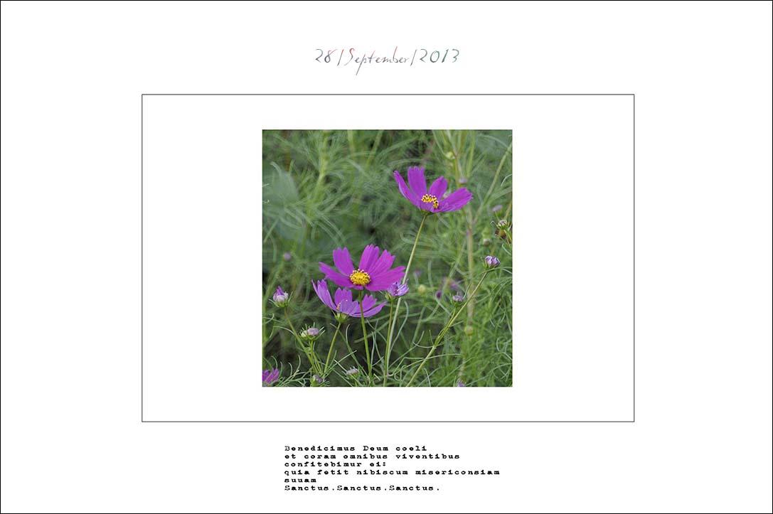 f0198771_001117.jpg