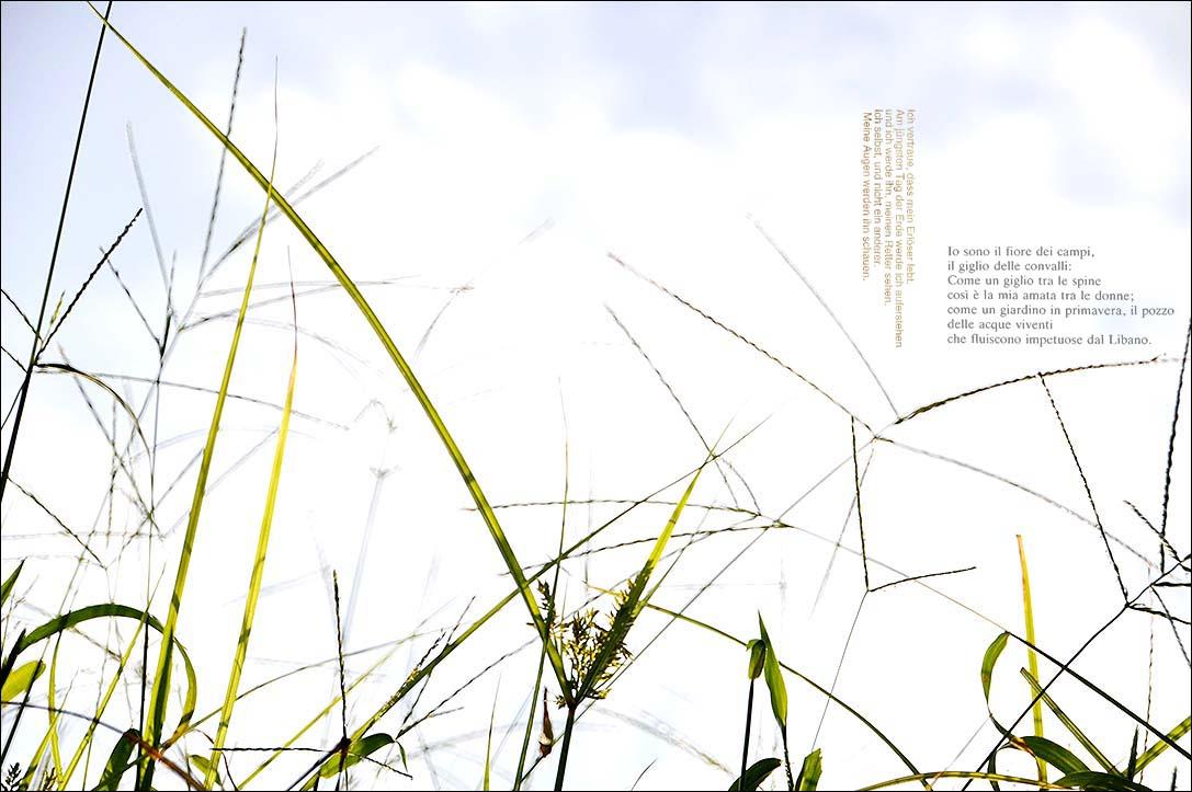f0198771_005642.jpg