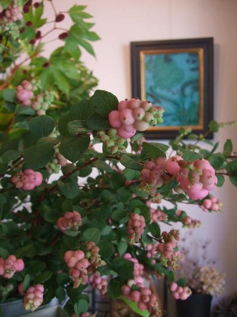 オークリーフ(秋の花)_f0049672_16455214.jpg