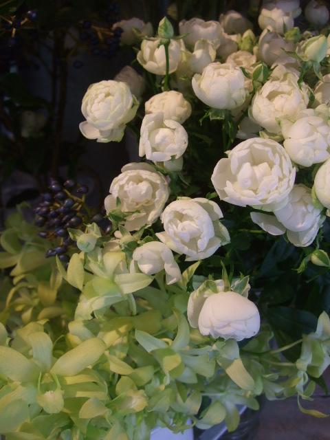 オークリーフ(秋の花)_f0049672_16471429.jpg