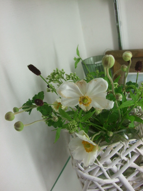 オークリーフ(秋の花)_f0049672_16544081.jpg