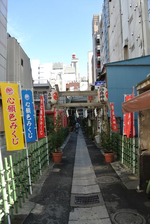 東京下町八社福参り+烏森神社_f0171028_21275087.jpg