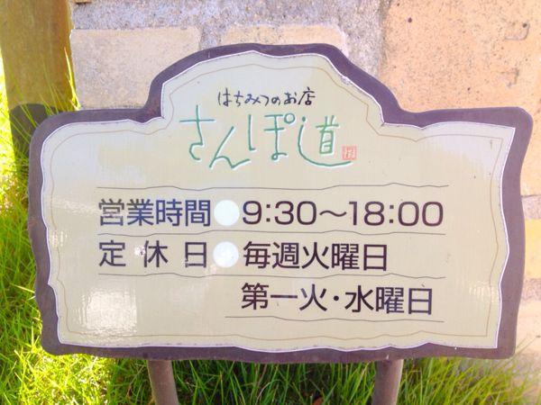 さんぽ道_e0292546_19541641.jpg