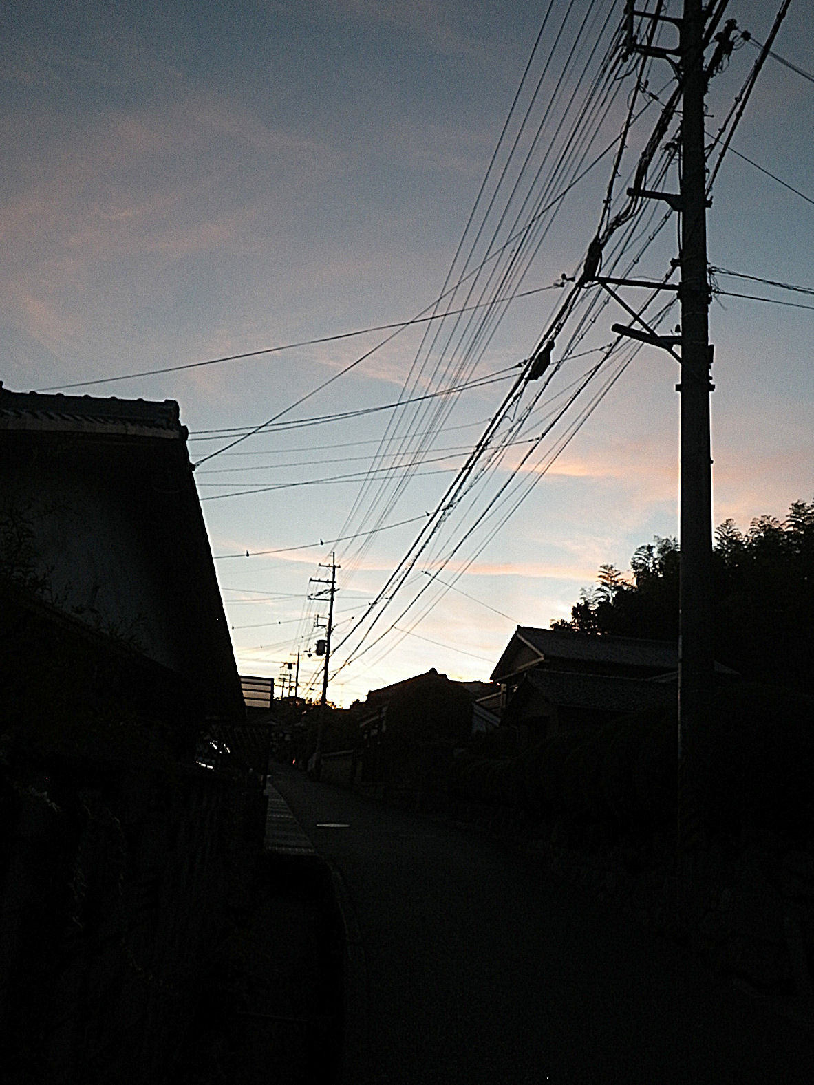 f0156359_20114234.jpg